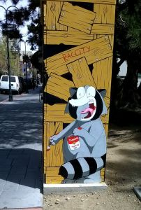 Michael Lucido raccoon downtown reno 3